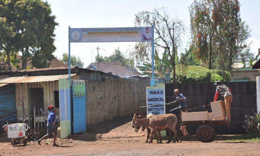 Why Kenya? Here's the Story. - Gallery Slide #5
