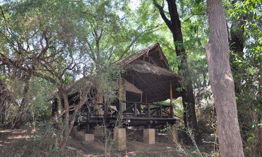 Our African Safari in Samburu ! - Gallery Slide #34