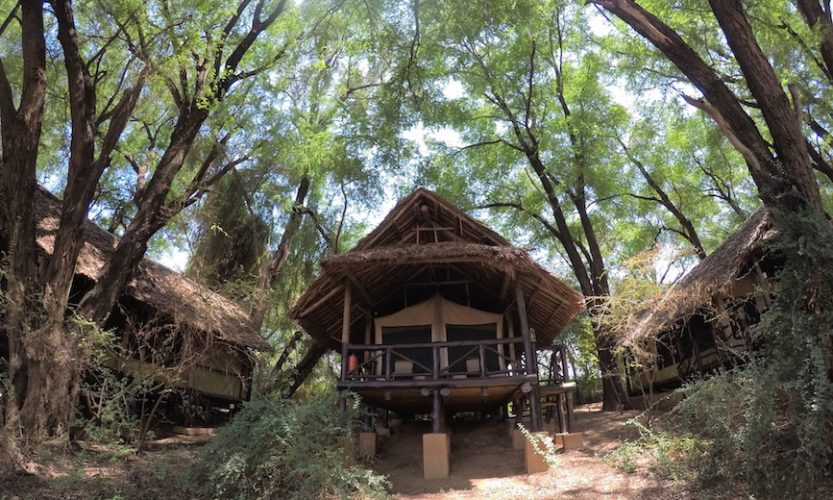 Our African Safari in Samburu ! - Gallery Slide #5