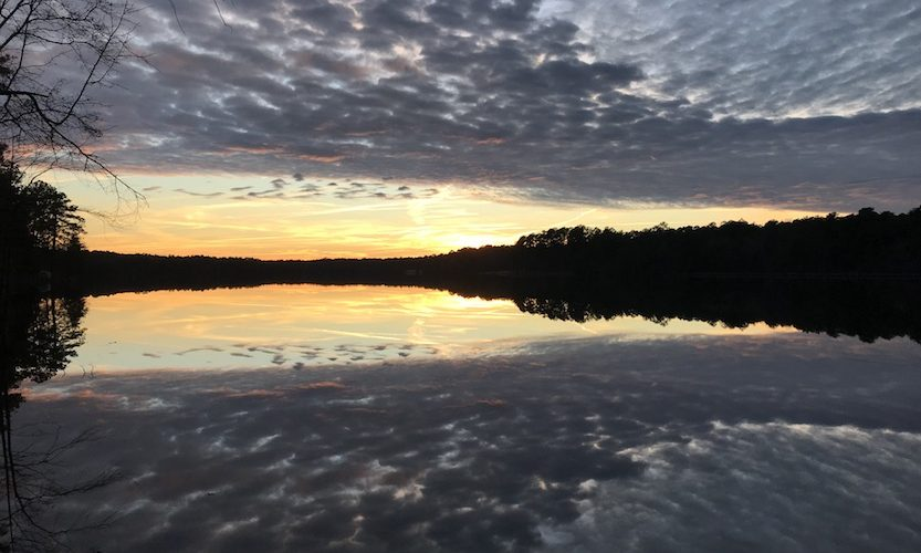 A Quick Post From Your Campground Hosts - Gallery Slide #2